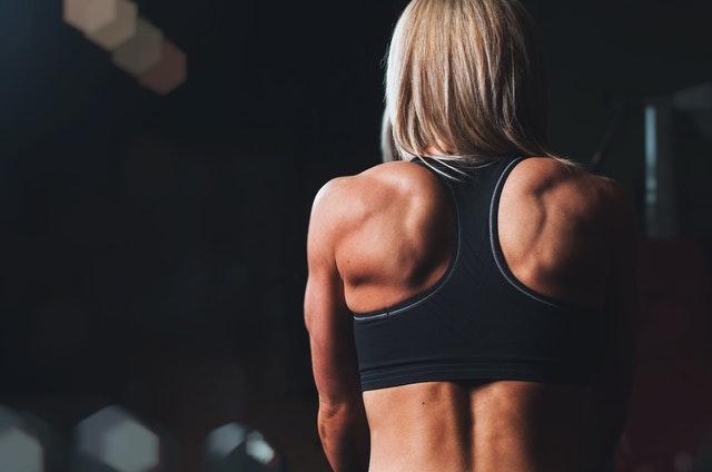 Which Bowflex Home Gym is Best